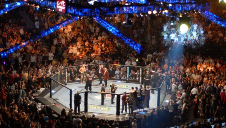 Le MMA en France